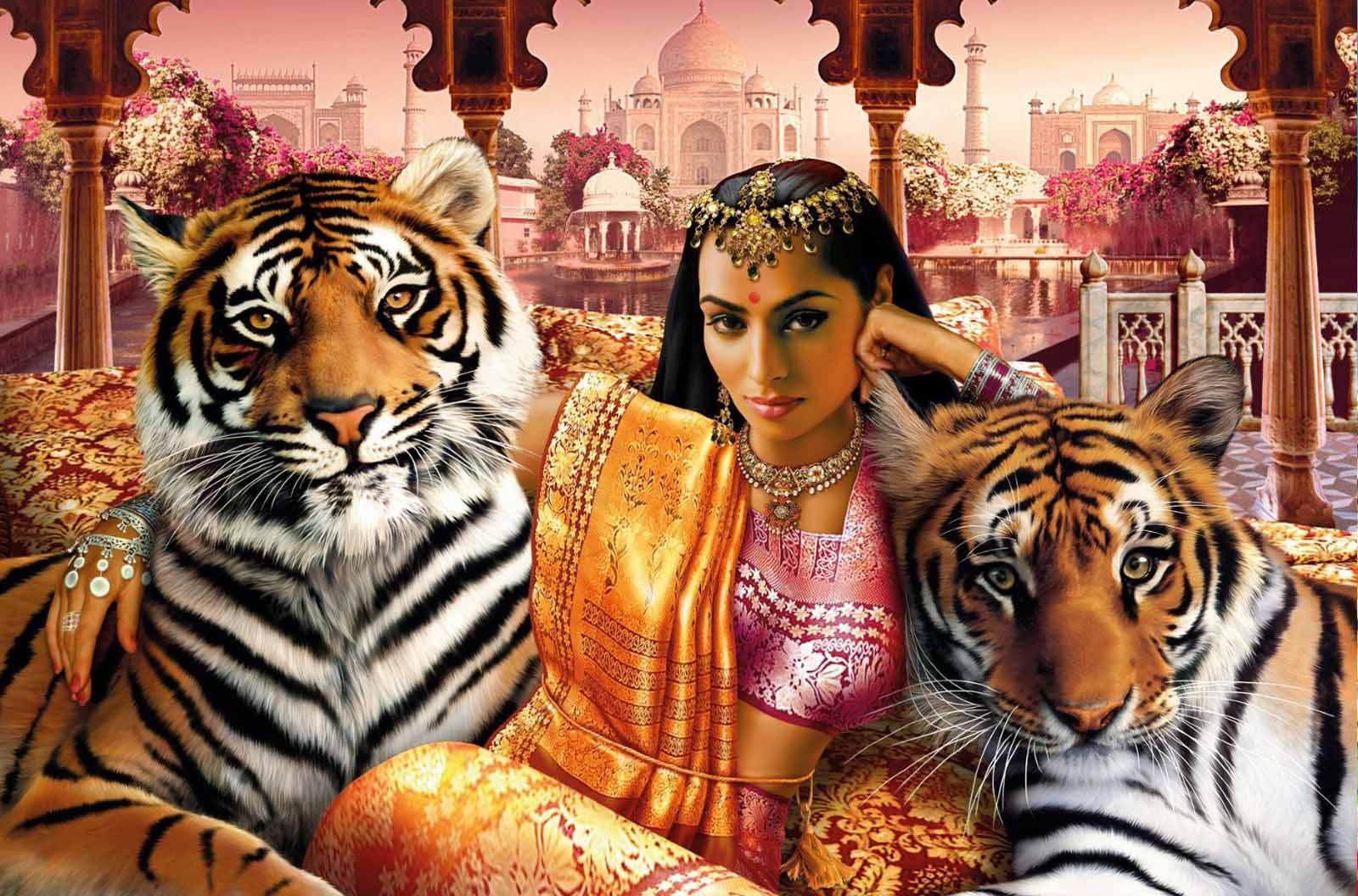 Тигр и девушка открытки, смешные